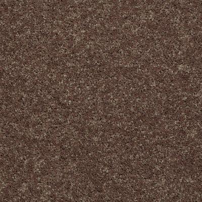 Shaw Floors All Star Weekend III Net Cattail 00702_E0773
