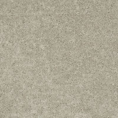 Shaw Floors Value Collections All Star Weekend 1 15 Net Bare Mineral 00105_E0793