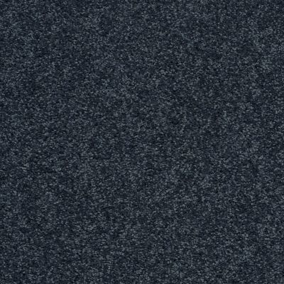 Shaw Floors Value Collections All Star Weekend 1 15 Net Denim 00410_E0793