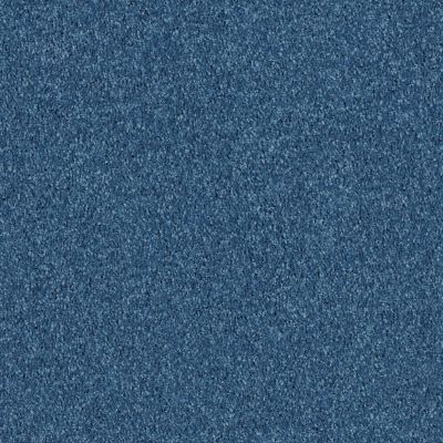 Shaw Floors Value Collections All Star Weekend 1 15 Net Indigo 00441_E0793