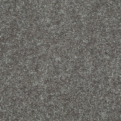 Shaw Floors Value Collections Play Hard Net Slate 00742_E0797