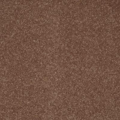 Shaw Floors Value Collections Secret Escape III Net Baked Pretzel 00701_E0805