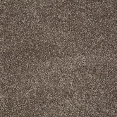 Shaw Floors You Know It Rustic Taupe 00706_E0807