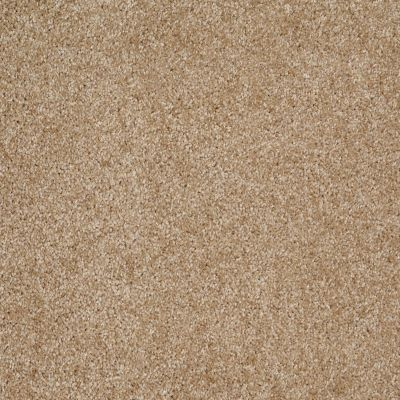 Shaw Floors Parlay Reed 00201_E0811