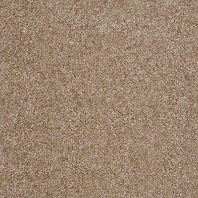 Shaw Floors Parlay Veranda 00700_E0811