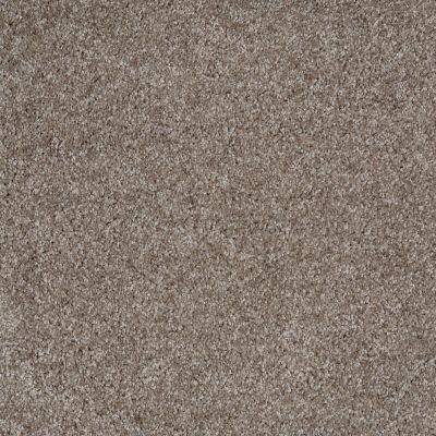 Shaw Floors Parlay Driftwood 00750_E0811