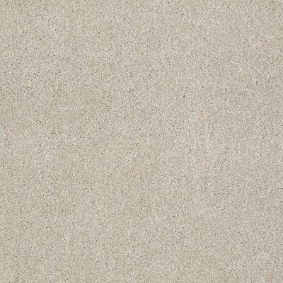 Shaw Floors That's Right Linen 00104_E0812