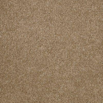 Shaw Floors What's Up Bridgewater Tan 00709_E0813