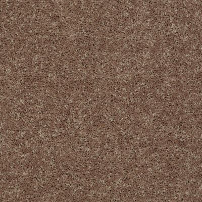 Shaw Floors Value Collections All Star Weekend II 12′ Net Granola 00701_E0814