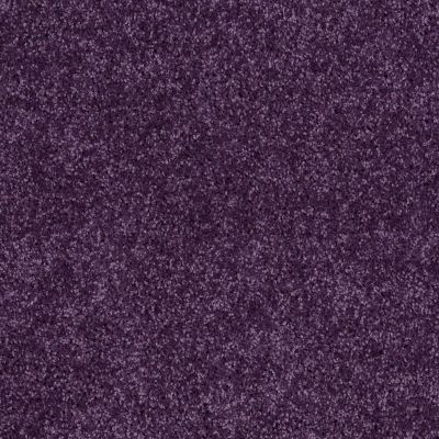 Shaw Floors Value Collections All Star Weekend II 12′ Net Grape Slushy 00931_E0814