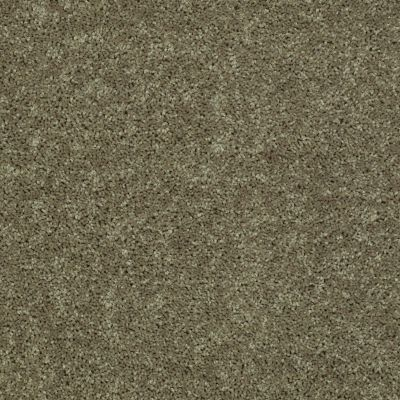Shaw Floors Value Collections All Star Weekend II 15′ Net Aloe 00300_E0815