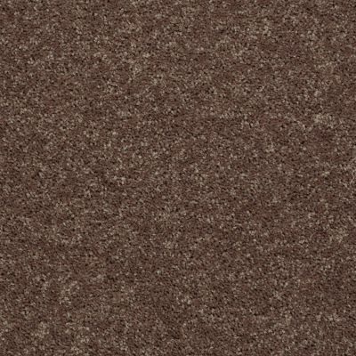 Shaw Floors Value Collections All Star Weekend II 15′ Net Cattail 00702_E0815