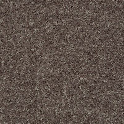 Shaw Floors Value Collections All Star Weekend II 15′ Net Driftwood 00703_E0815