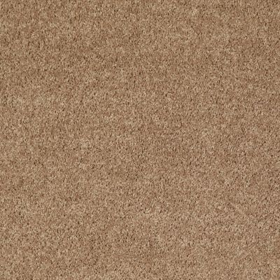 Shaw Floors Value Collections All Star Weekend III 15′ Net Golden Echoes 00202_E0816