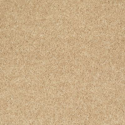 Shaw Floors Value Collections All Star Weekend III 15′ Net Crumpet 00203_E0816