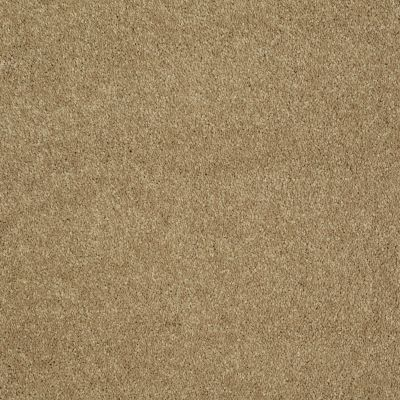 Shaw Floors Value Collections Keep Me I Net Camel 00201_E0817