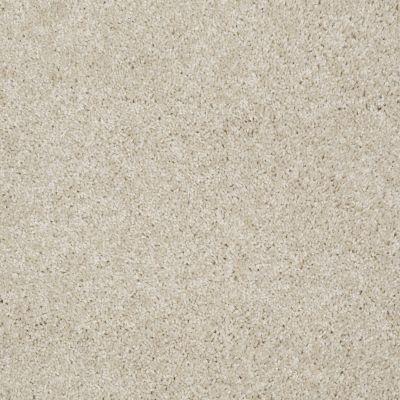 Shaw Floors Make It Yours (s) Venetian Tile 00106_E0819