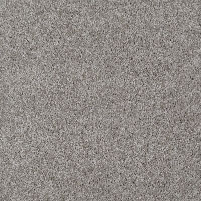 Shaw Floors Make It Yours (s) Pewter Solid 00550_E0819