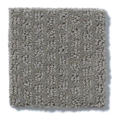 Shaw Floors Value Collections Pacific Trails Net Titanium 00544_E0826