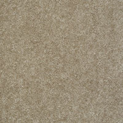 Shaw Floors Get Real Gray Flannel 00511_E0837