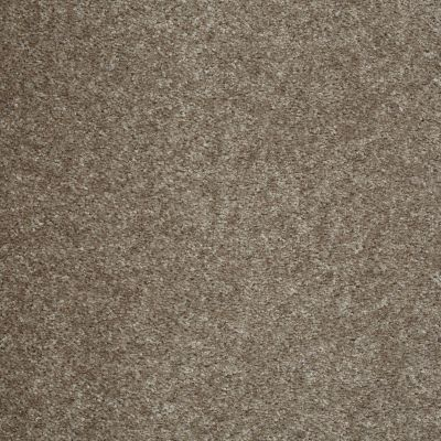 Shaw Floors Get Real Graphite 00712_E0837