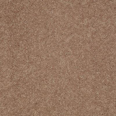 Shaw Floors Value Collections Well Played I 15′ Net Pebble Creek 00701_E0847