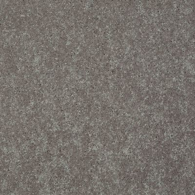Shaw Floors Value Collections Well Played II 15′ Net Mocha Frost 00702_E0848