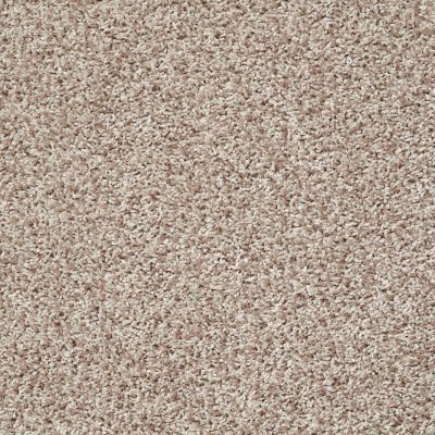 Shaw Floors Color Flair Cornmeal 00103_E0852
