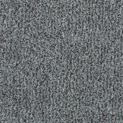 Shaw Floors Color Flair Gray Flannel 00504_E0852