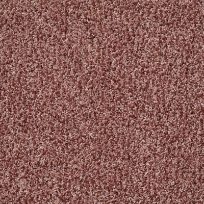 Shaw Floors Color Flair Summer Coral 00600_E0852