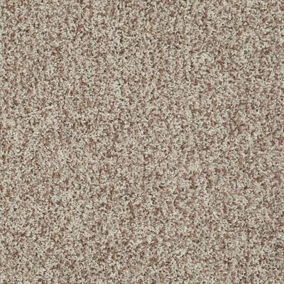 Shaw Floors Color Flair Honey Butter 00700_E0852