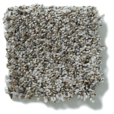 Shaw Floors Value Collections Power Buy 76 Taupe Stone 00710_E0860