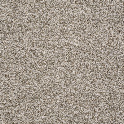 Shaw Floors Value Collections Reflect With Me Net Taupe Stone 00113_E0869