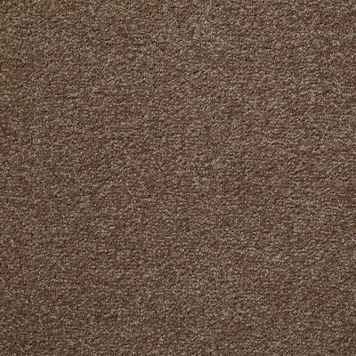Shaw Floors Something Sweet Brushed Suede 00702_E0881