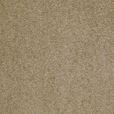 Shaw Floors Something Sweet Starcrest 00710_E0881