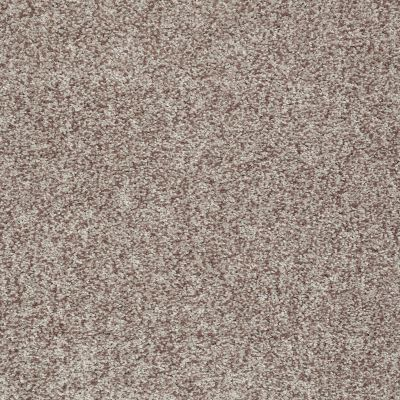 Shaw Floors Value Collections Dazzle Me Texture Net Flax 00104_E0884