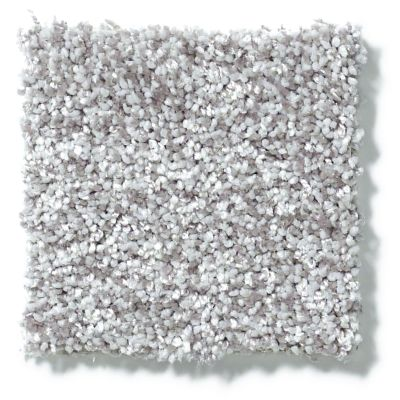 Shaw Floors Value Collections Dazzle Me Texture Net Chrome 00502_E0884