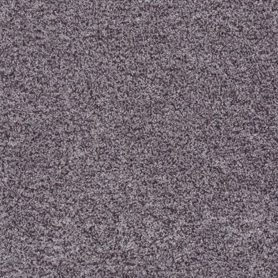 Shaw Floors Value Collections Dazzle Me Texture Net Ironstone 00503_E0884