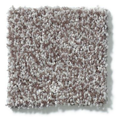 Shaw Floors Value Collections Dazzle Me Texture Net Fleece 00704_E0884