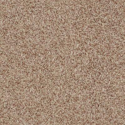 Shaw Floors Value Collections Dazzle Me Twist Net Wheat 00710_E0885