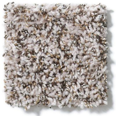 Shaw Floors Value Collections Impress Me I Net Winter White 00110_E0887