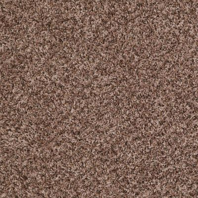 Shaw Floors Value Collections Impress Me I Net Wicker 00211_E0887