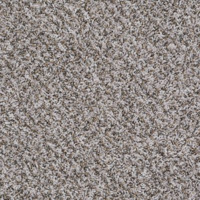 Shaw Floors Value Collections Impress Me I Net Silver Breeze 00500_E0887