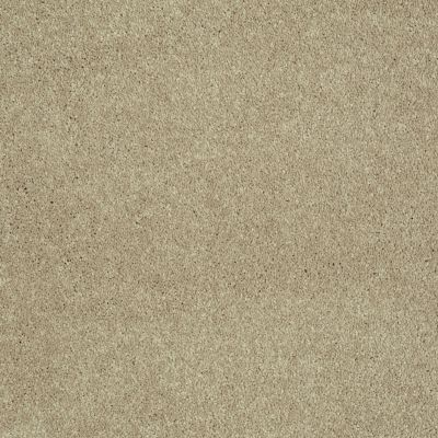 Shaw Floors Value Collections Sing With Me I Net Rattan 00701_E0905