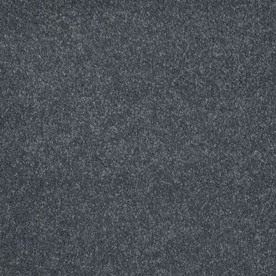 Shaw Floors Value Collections Sing With Me II Net Charcoal 00504_E0906