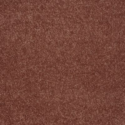 Shaw Floors Value Collections Sing With Me II Net Arabian Spice 00601_E0906