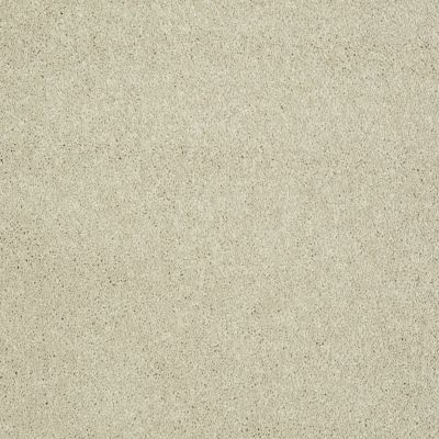 Shaw Floors Value Collections Sing With Me II Net Natural Wood 00700_E0906
