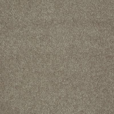 Shaw Floors Value Collections Sing With Me II Net Tea Stain 00702_E0906