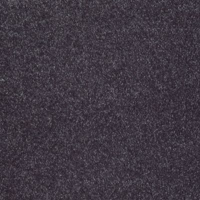 Shaw Floors Value Collections Sing With Me II Net Wisteria 00900_E0906