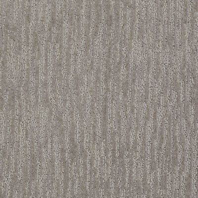 Shaw Floors Well Timed Taupe Stone 00590_E0916